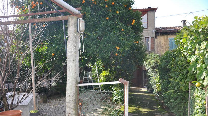 Terratetto in vendita nella campagna di Seravezza Cod 1616