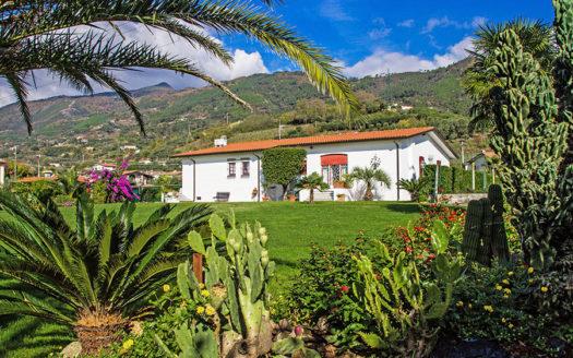 Villa in vendita nella campagna di Pietrasanta Cod 1596